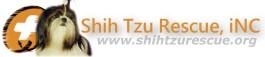 Shih Tzu Rescue